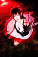 Crimson Camellia by Animaidens