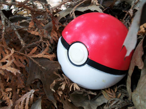 You Found A Pokeball! by Suichu-Kokyu