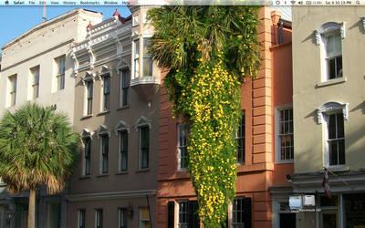 Charleston by c-niska