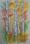 Birch trees by PilarErika
