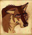 Wolf: Janus by wadifahtook
