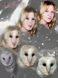 Owl Morph by Lolalot17