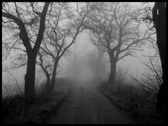 The Fog -a road by Necrotrup