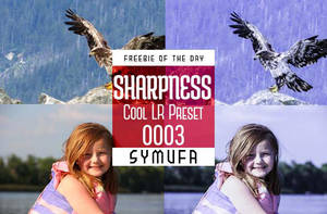 Cool Sharpness Lightroom Presets 0003 by symufa