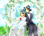 Wedding Day by kathy100