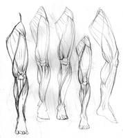 muscles 0001 by Samuel-kun