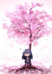 Cherry Blossoms (2) by Yumkoyun