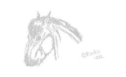 sketch by PinkuDoragon