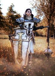 Crusader from Diablo cosplay by Dragunova-Cosplay