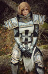 Crusader from Diablo cosplay by Dragunova-Cosplay