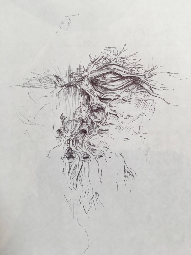 Ent (from Lotr) Sketch by Scarlet-wish