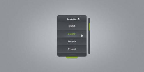 Language Selector Combo Box by ahmadhania