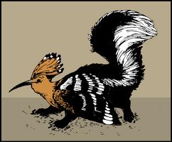 hoopoe skunk gryphon by gescheitert