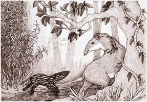 jungle tapirs by gescheitert