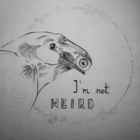 I'm not weird by kreatywnanazwaa