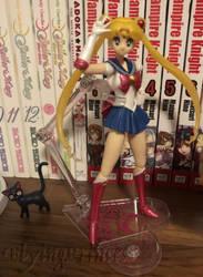 My Sailor Moon Figure (November Pose) by FlyingPrincess
