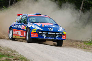 Orlen Rally 2008 _1_ by schwepes