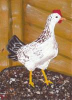 Chicken ATC by LuvLoz