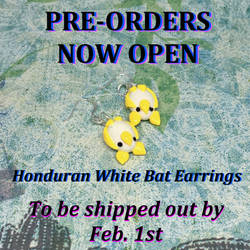 PRE-ORDER Honduran White Bat Earrings by okapirose