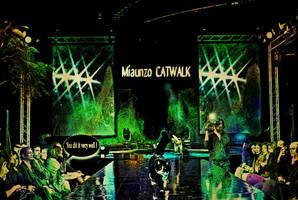 Catwalk by Taeppesh81