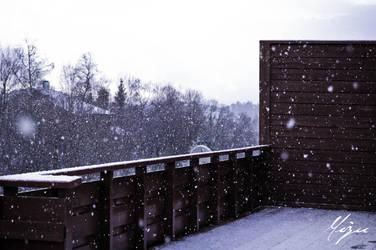Snow storm II by Beommie