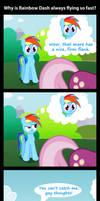 Why Rainbow Dash Is Flying So Fast by MrBastoff