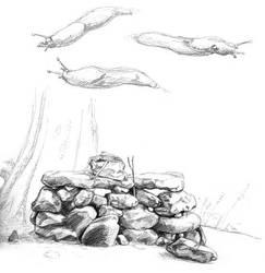 Rocks and Slugs by yonjuunana