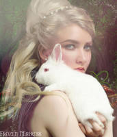 Journey To Wonderland by frozenmistress