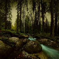 in the Tatra valley... by Alcove
