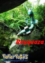 Rayquaza by Toshikun