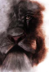 Lion by GARIDelf