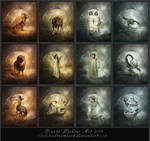 The 12 signs of the zodiac by ThelemaDreamsArt