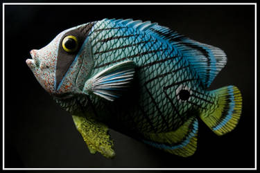 Fish for the Fridge by duronboy