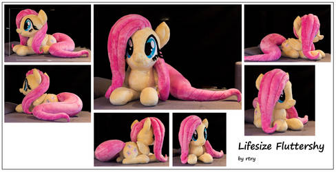 Sitting Lifesize Fluttershy by rtry