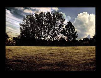 Landscape V by Nicolschn