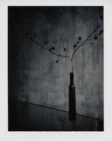 maniere noire by ashveenp