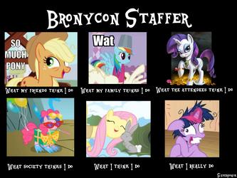 Being a Bronycon Staff Member by xrwarramen