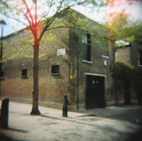 Holga: Argyle Walk by pet-rubber-duck