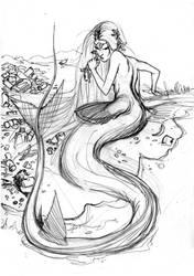 Stipre di Pesce, the protagonist by lauraspianelli