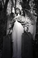Highgate Cemetery by neon-sunrise