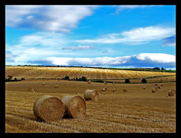 Harvest by Ballisticvole