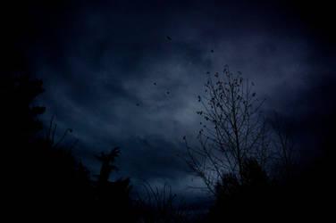 darkness by 4nki