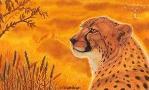 International Cheetah Day by der-nachtwandler