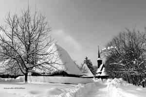 Iarna pe ulitza by Dristor2507