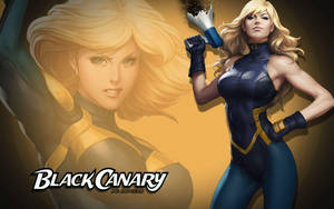 Black Canary by Artgerm by Superman8193