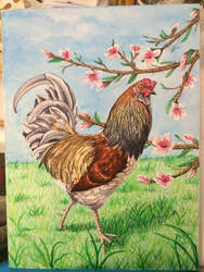 Chicken two by orzak