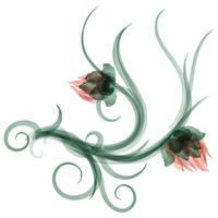 Flower-9 by knottyprof