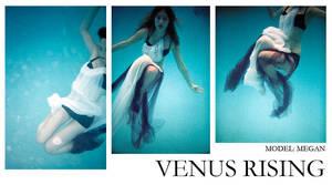 Venus Rising by apolloslyre