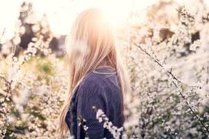 Blossoms by Maegondo