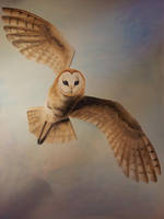 Owl watercolour by BecciES